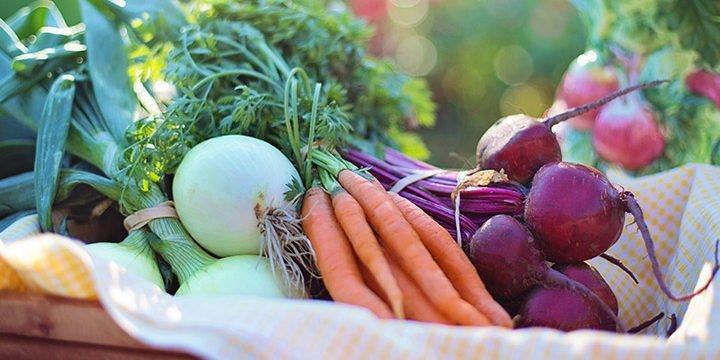 Verschiedene Gemüsesorten in einem Korb