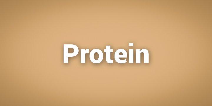 """Das Wort """"Protein"""" auf einem braunen Hintergrund"""