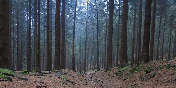 Unser Wochenend-Abenteuer im Taunus: Outdoor fängt vor der Haustür an