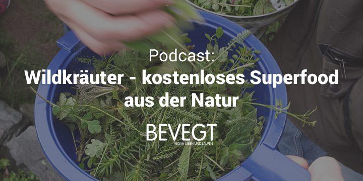Wildkräuter richtig sammeln und verwenden: Interview mit der Kräuterfrau Regine Ebert
