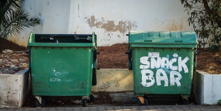 Titelbild: Zwei grüne Mülltonnen