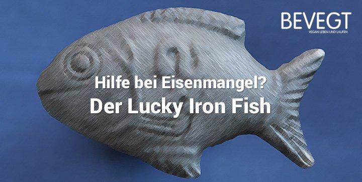 Der Lucky Iron Fish – ein sinnvolles Hilfsmittel bei Eisenmangel?