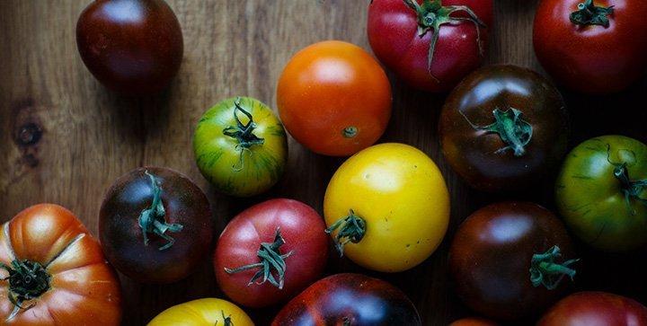 Bunte Tomaten in verschiedenen Farben