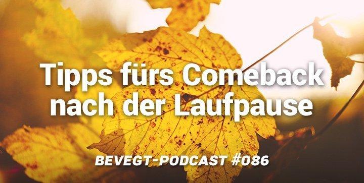 herbstlich gelbe Blätter im Gegenlicht
