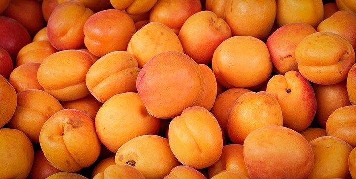 Titelbild: Frische Aprikosen