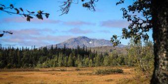 Titelbild: Eine Landschaft in Skandinavien