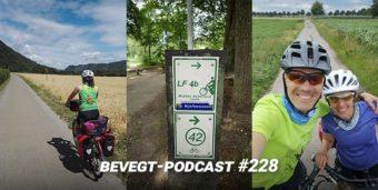 Eine Bildercollage von unserer Radreise nach Den Haag